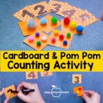 Cardboard and Pom Poms Counting Activity